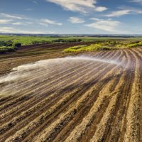 Why Is Fertilizer Manufacture So Necessary? – Know the Benefits